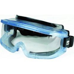Pacific Ski Glasses